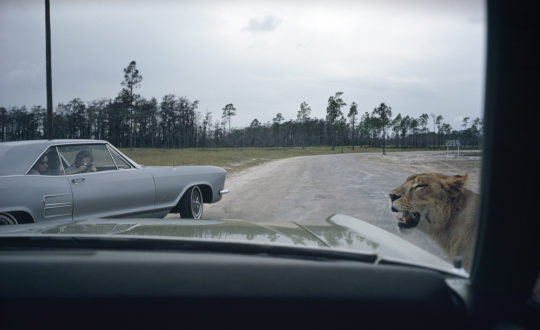 Joel Meyerowitz, Florida (1970) ©Joel Meyerowitz | Courtesy of the artist and Howard Greenberg Gallery, New York