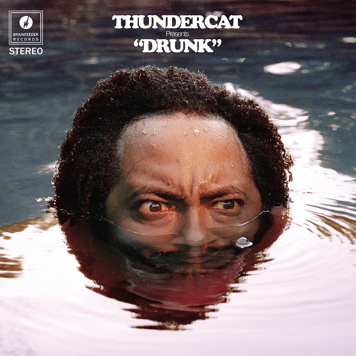 Thundercat brings out his geeky groove