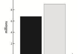 Biracial Graph