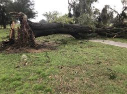Irma damage at Jacaranda Golf Course Venice FL- credit Jeremiah Delgado