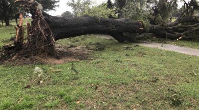 Irma damage at Jacaranda Golf Course Venice FL- credit Jeremiah Delgado