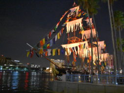 Pirate Ship___